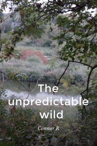 The unpredictable wild Connor R