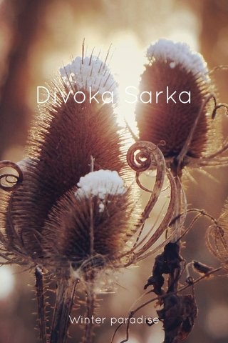 Divoka Sarka Winter paradise