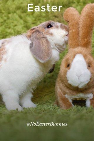 Easter #NoEasterBunnies