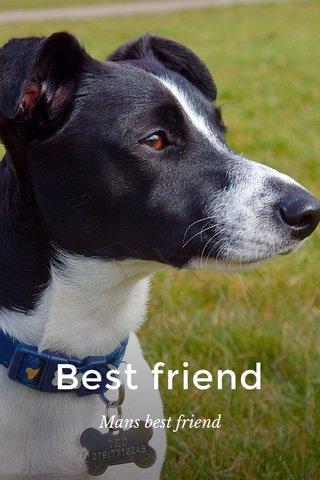 Best friend Mans best friend