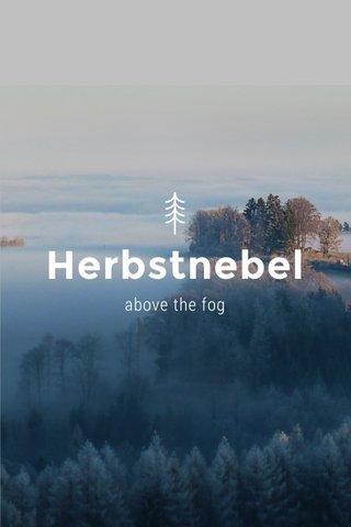 Herbstnebel above the fog
