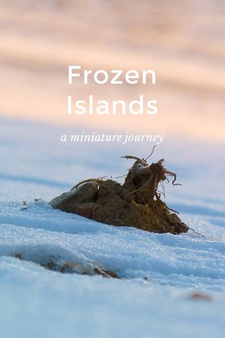 Frozen Islands a miniature journey