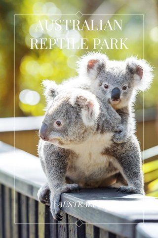 AUSTRALIAN REPTILE PARK | AUSTRALIA |
