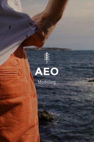 AEO Modeling