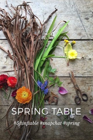 SPRING TABLE #5ftinftable #snapchat #spring