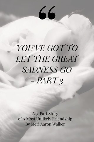 YOU'VE GOT TO LET THE GREAT SADNESS GO - PART 3 A 3-Part Story of A Most Unlikely Friendship By Meri Aaron Walker #iphoneography #iphoneonly #stellerstories #creative