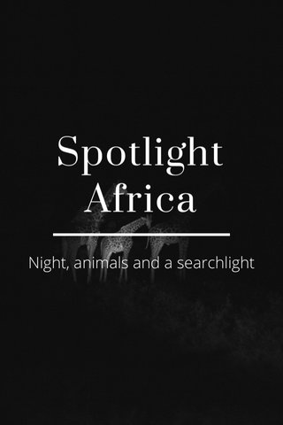 Spotlight Africa Night, animals and a searchlight