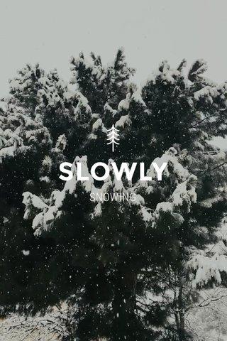 SLOWLY SNOWING