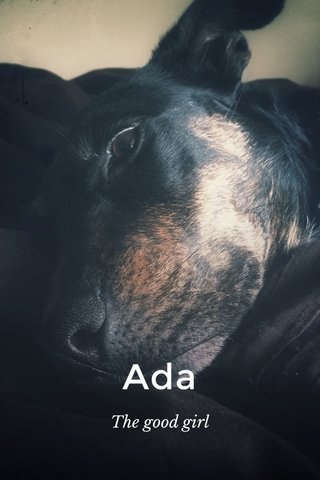 Ada The good girl