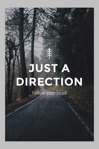 JUST A DIRECTION follow your head