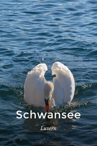 Schwansee Luzern