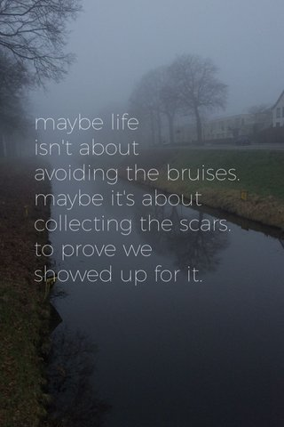maybe life isn't about avoiding the bruises. maybe it's about collecting the scars. to prove we showed up for it.