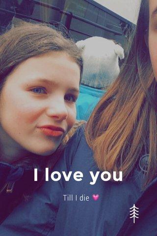 I love you Till I die 💗