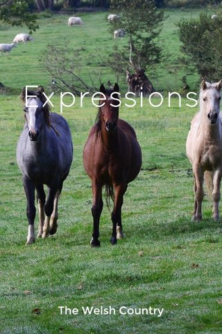 Expressions The Welsh Country