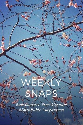 WEEKLY SNAPS #seewhatisee #weeklysnaps #5ftinftable #mystjames