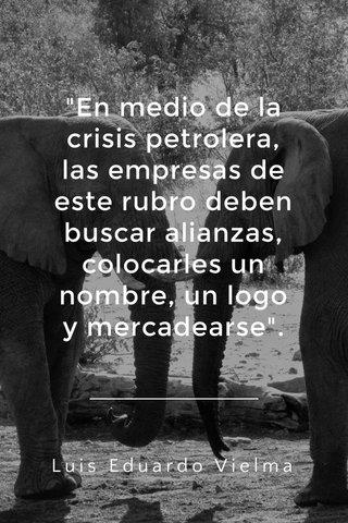 """""""En medio de la crisis petrolera, las empresas de este rubro deben buscar alianzas, colocarles un nombre, un logo y mercadearse"""". Luis Eduardo Vielma"""