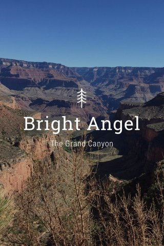 Bright Angel The Grand Canyon