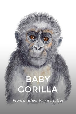 BABY GORILLA #conservationstory #creative