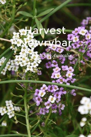 Harvest Newrybar Northern NSW, Australia