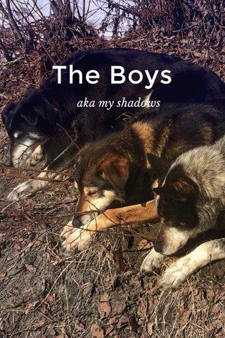 The Boys aka my shadows