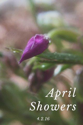 April Showers 4.2.16