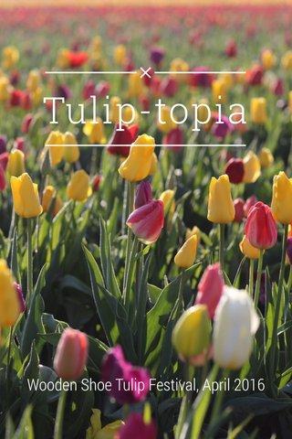 Tulip-topia Wooden Shoe Tulip Festival, April 2016