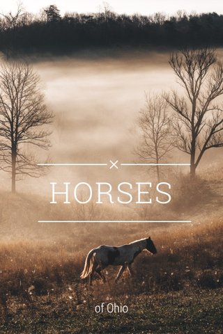 HORSES of Ohio