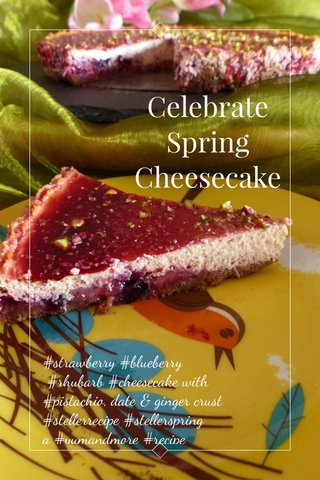 Celebrate Spring Cheesecake #strawberry #blueberry #rhubarb #cheesecake with #pistachio, date & ginger crust #stellerrecipe #stellerspring a #yumandmore #recipe