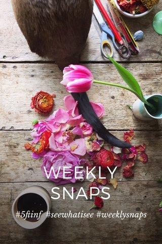 WEEKLY SNAPS #5ftinf #seewhatisee #weeklysnaps