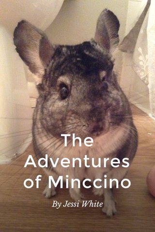 The Adventures of Minccino By Jessi White