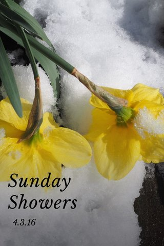 Sunday Showers 4.3.16