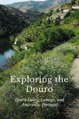 Exploring the Douro Douro Valley, Lamego, and Amarante, Portugal