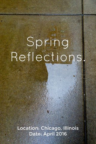 Spring Reflections. Location: Chicago, Illinois Date: April 2016