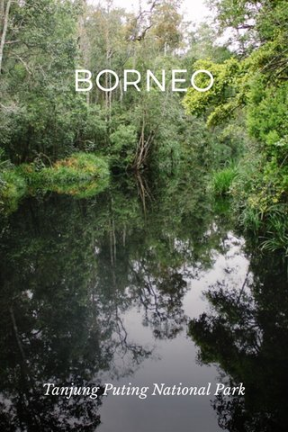 BORNEO Tanjung Puting National Park