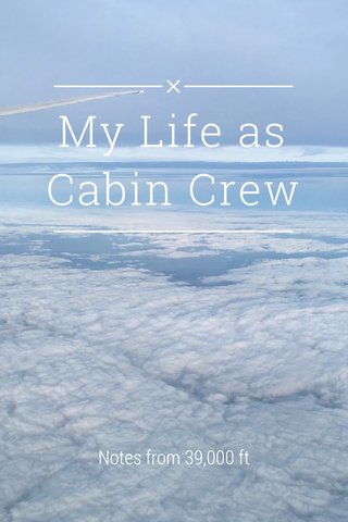 My Life as Cabin Crew Notes from 39,000 ft