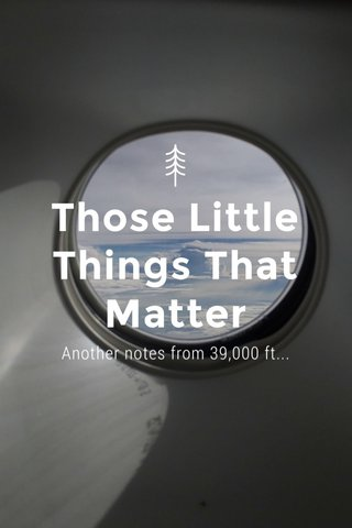 Those Little Things That Matter Another notes from 39,000 ft...