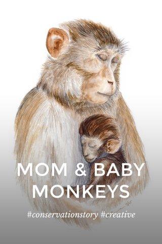 MOM & BABY MONKEYS #conservationstory #creative