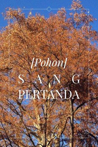 SANG PERTANDA [Pohon]