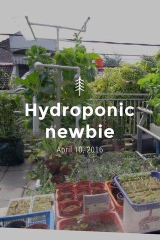 Hydroponic newbie April 10, 2016