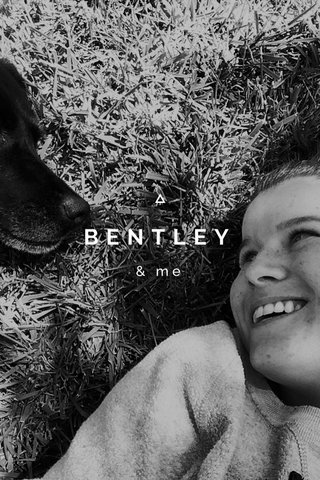 BENTLEY & me