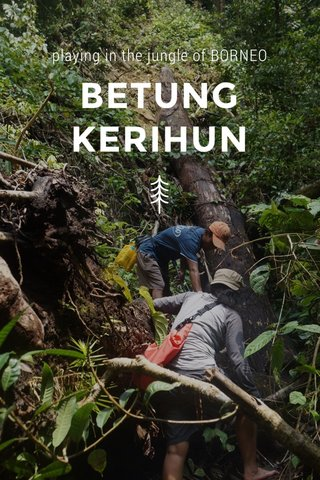 BETUNG KERIHUN playing in the jungle of BORNEO