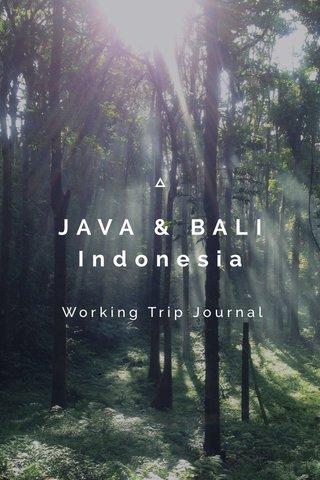 JAVA & BALI Indonesia Working Trip Journal