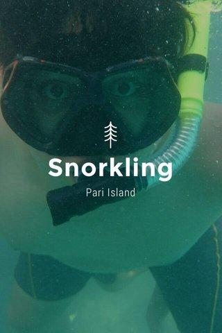 Snorkling Pari Island
