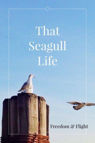 That Seagull Life Freedom & Flight