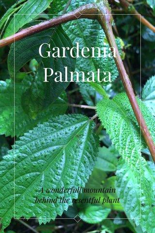 Gardenia Palmata A wonderfull mountain behind the resentful plant