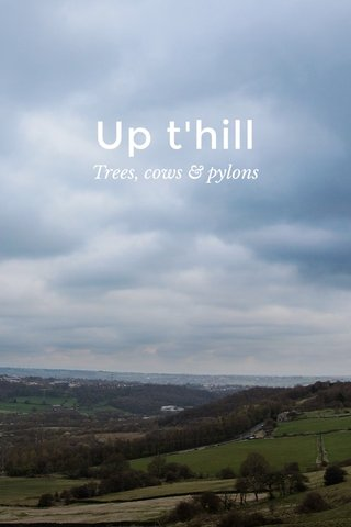 Up t'hill Trees, cows & pylons