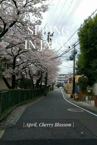 SPRING IN JAPAN | April, Cherry Blossom |