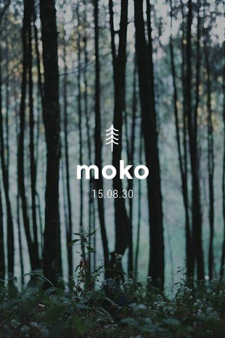 moko 15.08.30