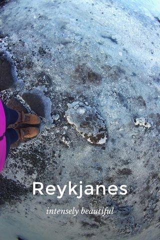 Reykjanes intensely beautiful