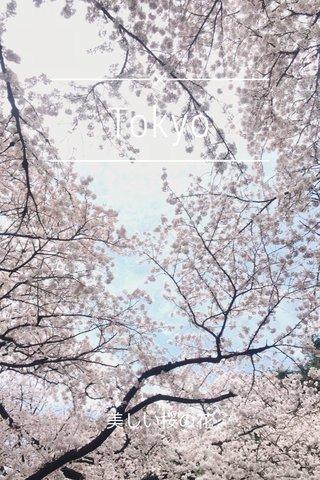 Tokyo 美しい桜の花